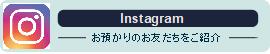 instagram_bnnr